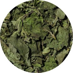 Peppermynte (hele blader)
